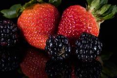 Сортированные ягоды изолированные на черноте Стоковые Изображения