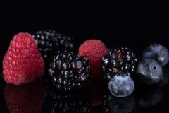 Сортированные ягоды изолированные на черноте Стоковое Фото