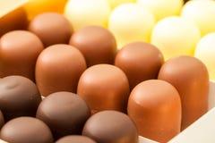 Сортированные bonbons шоколада Стоковые Изображения