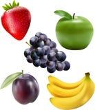 сортированный плодоовощ Стоковая Фотография RF