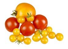 сортированный свежий изолированный красный желтый цвет томатов Стоковые Изображения