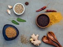 Сортированный специй имбиря, семя фенхеля, высушило тимиан, мудрые листья, g Стоковые Фотографии RF