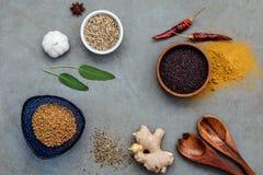 Сортированный специй имбиря, семя фенхеля, высушило тимиан, мудрые листья, g Стоковая Фотография
