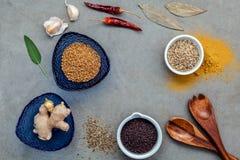 Сортированный специй имбиря, семя фенхеля, высушило тимиан, мудрые листья, g Стоковые Изображения RF