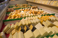сортированный сыр Стоковые Фото