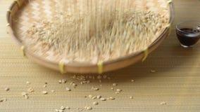 Сортировать кофейные зерна, индигенное знание сток-видео