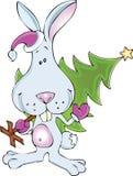 сосенка зайцев Стоковое Изображение RF