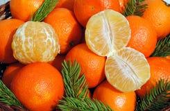 сосенка игл мандарина предпосылки Стоковая Фотография RF