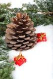 сосенка подарка конуса ветви коробок стоковое фото rf