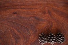 сосенка предпосылки близким изолированная конусом вверх по белизне Стоковая Фотография