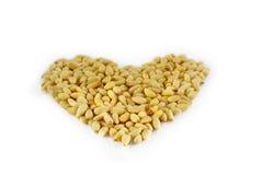 сосенка сердца nuts сформировала стоковое изображение