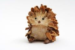 сосенка hedgehog конуса Стоковое Фото