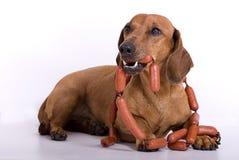 сосиска конца собаки Стоковые Изображения RF
