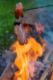 Сосиски жарки над огнем Стоковая Фотография RF