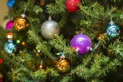 Сосна сферы украшения рождества Стоковое фото RF