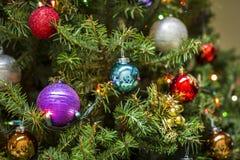 Сосна сферы украшения рождества Стоковая Фотография RF