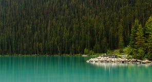 Сосновый лес берега воды Lake Louise Стоковые Изображения RF