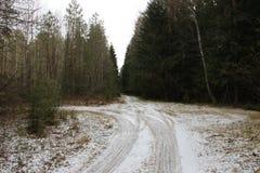 Сосновый лес в предыдущей весне как раз упал вне больная вилка дороги леса весны снега стоковые изображения