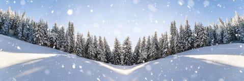 Сосны в горах и падая снег в зиме su сказки Стоковые Фотографии RF