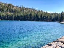 Сосны леса amd озера аквамарин Стоковое Изображение