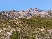 Сосны на изрезанных горных склонах в восточных Sierras стоковое изображение