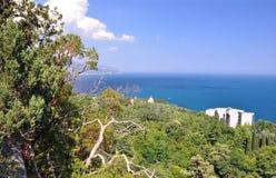 Сосны растут на берегах голубого моря на предпосылке неба и моря, на котором 2 корабля плавают Крым r стоковые изображения