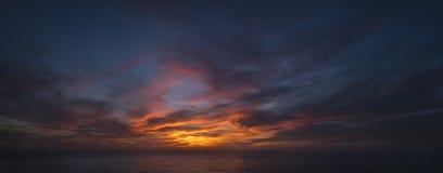 Сосны Torrey, пляж Сан-Диего, Калифорния Стоковые Изображения