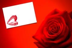 Составное изображение красной розы в цветени Стоковые Фото