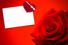 Составное изображение красной розы в цветени Стоковые Изображения RF