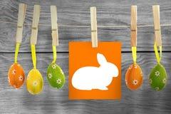 Составное изображение кролика Стоковые Фотографии RF