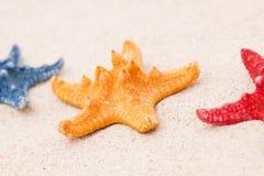 составы пляжа зашкурят раковины Стоковые Изображения