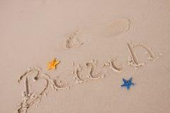 составы пляжа зашкурят раковины стоковые изображения rf