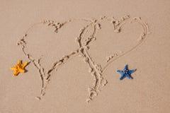 составы пляжа зашкурят раковины Стоковое Изображение