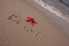 составы пляжа зашкурят раковины стоковая фотография