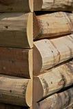 составьте древесину Стоковая Фотография RF