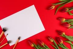 Составьте щетки на белых тюльпанах o цветков чистого листа бумаги и весны Стоковое Изображение