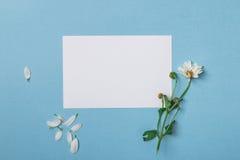 Состав взгляд сверху весны Стоковая Фотография