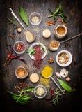 Состав горячих специй и свежих трав flavoring на темной деревенской деревянной предпосылке Стоковые Фотографии RF