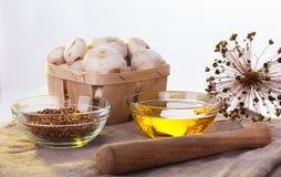 Состав грибков подсолнечного масла Стоковые Фотографии RF