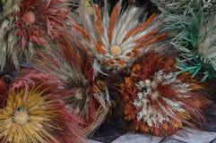Состав завода и цветка сухой стоковое фото