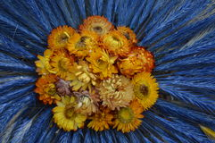 Состав завода и цветка сухой стоковые фото