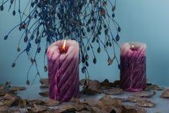 Состав зимы с 2 свечами и красивой высушенной ветвью стоковое фото