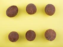 Состав кокосов на яркой желтой предпосылке Взгляд сверху на 6 всех кокосах Комплект здоровых экзотических плодоовощей стоковая фотография rf