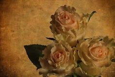 Состав на старой теме - вспомните подарки розы стоковые фото