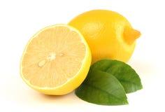 состав немногие лимоны листьев Стоковые Фотографии RF