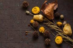 Состав осени высушенных плодоовощей и листьев Стоковое Изображение RF