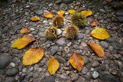 Состав осени с листьями и каштанами стоковое изображение rf