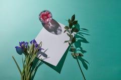 Состав от букета фиолетовых радужек зеленых хворостины и вазы с розовым цветком с белым космосом экземпляра для текста Стоковое Изображение