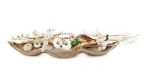 Состав от перл, коралла и орхидей на белизне Стоковые Изображения