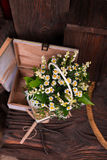Состав оформления стоцвета с книгами и коробкой дальше Стоковые Фото